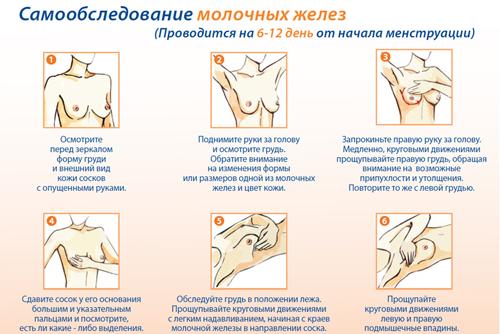самообследование молочных желез