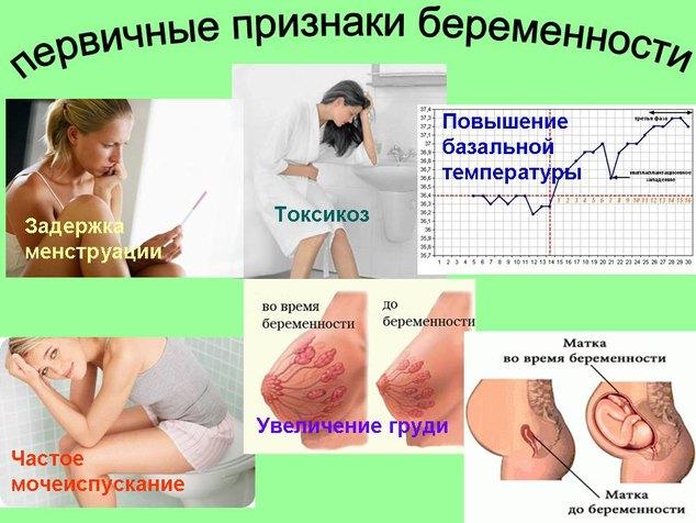 Какие признаки беременности первые