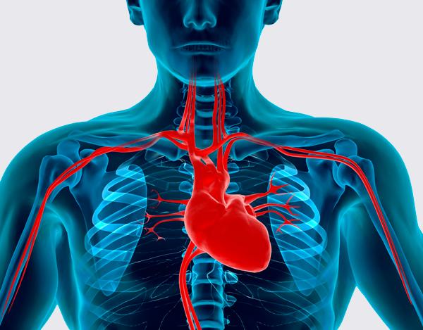Болезнь сердца, как причина гипотонии