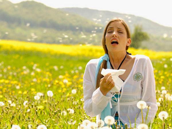 allergiya-na-pyltcu
