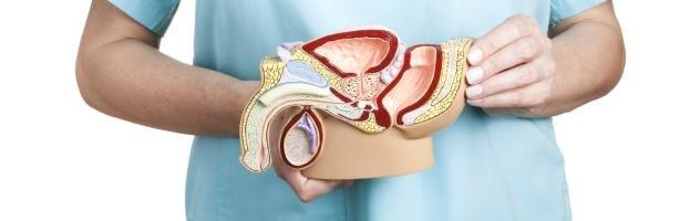 urologija-jerektilnaja-disfunkcija