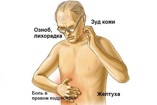 1450984045_zheltuha