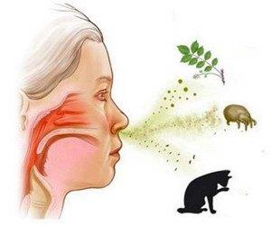 allergens_cats