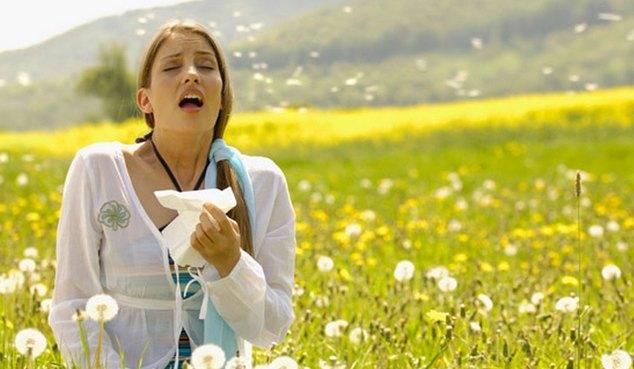 причины аллергии по синельникову