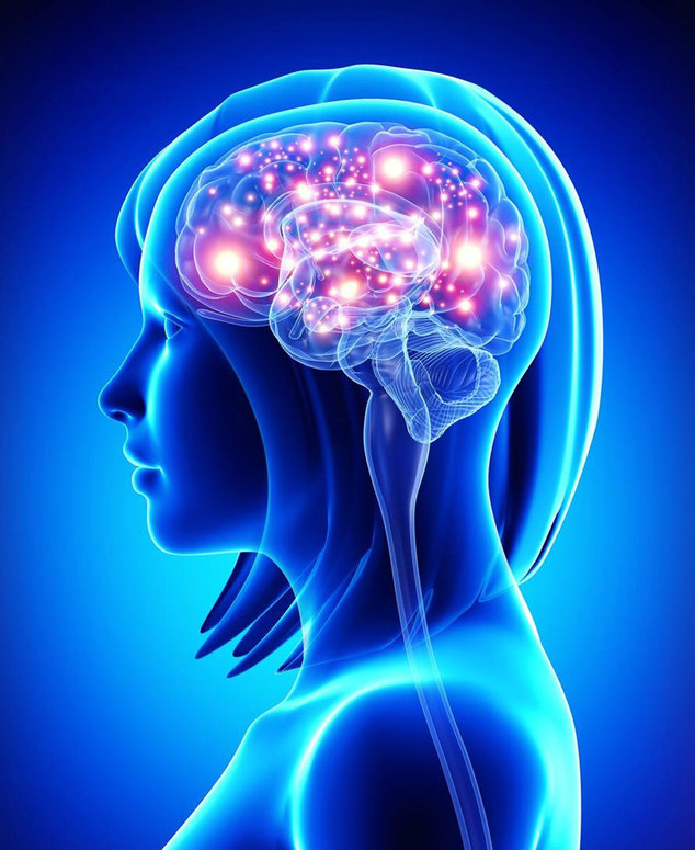 1398005905_obzornaya-mrt-mozga