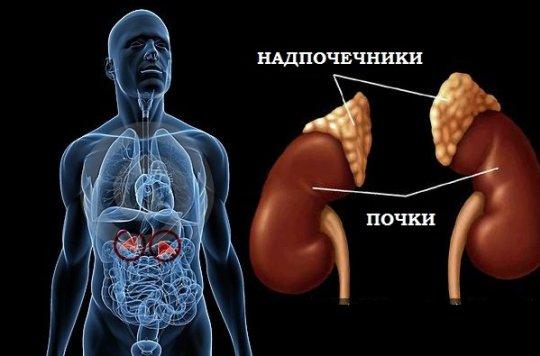 нарушение работы надпочечников при болезни Иценко-Кушинга