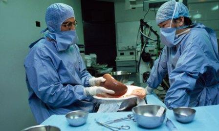 Трансплантация печени при некрозе