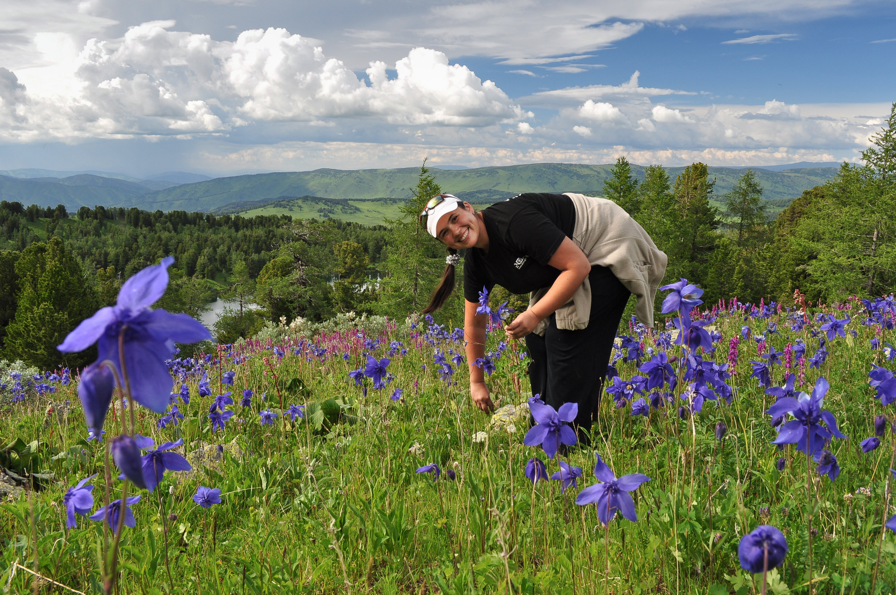 Сбор лекарственных растений весной
