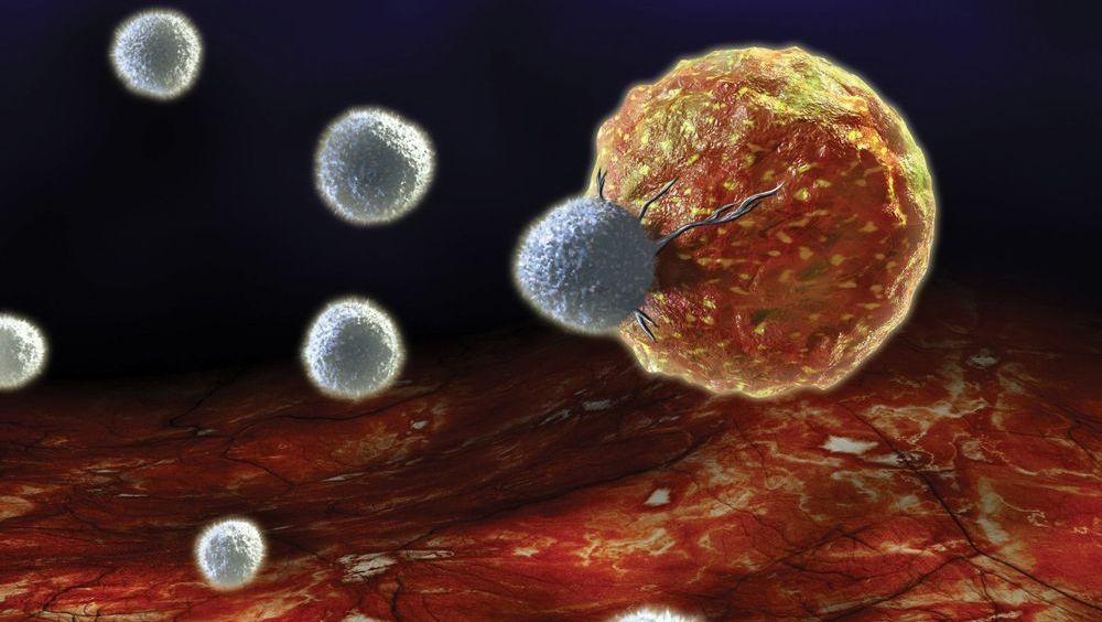 Шанхайские ученые разрабатывают технологию лечения рака без повреждения здоровых клеток
